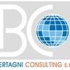 Bertagni Consulting s.r.l.