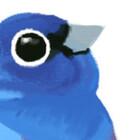 allthe-birds