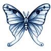 mariposablu
