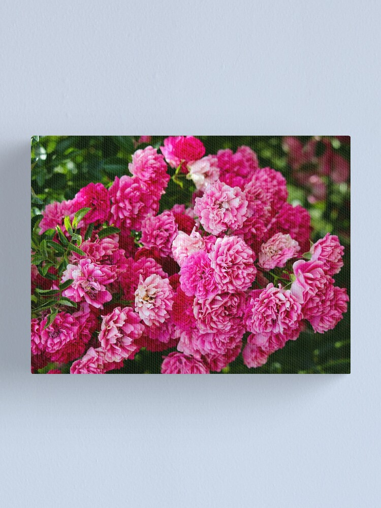 Alternate view of Rose bunch Canvas Print