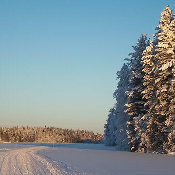 Winter by Naumovka