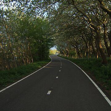 Road. by Naumovka