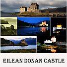 Eilean Donan Castle    by Alexander Mcrobbie-Munro
