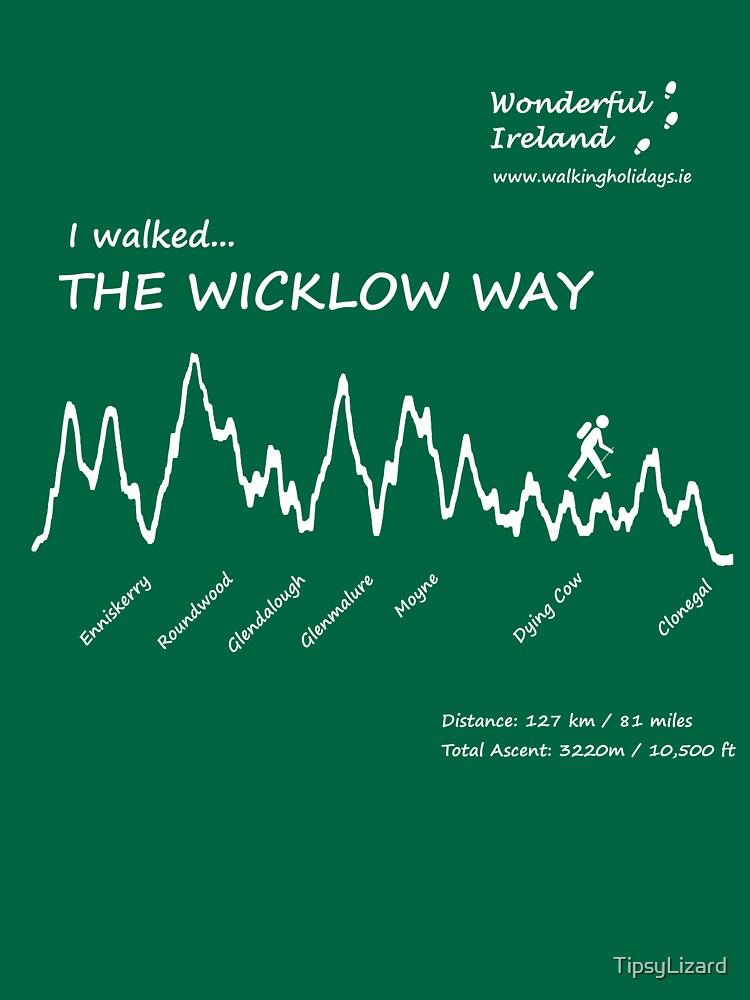 The Wicklow Way with Wonderful Ireland by TipsyLizard