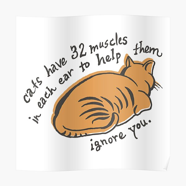 32 Muscles To Ignore You Poster