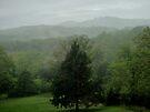 Misty Ozark Hills by John Carpenter