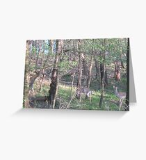 Heartsong of the Forest Queen Greeting Card