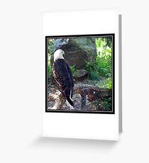 ENDANGERED BEAUTY Greeting Card