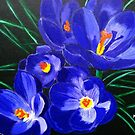 spring crocus by maggie326