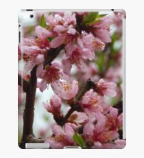 Ode to Spring - Please view larger iPad Case/Skin