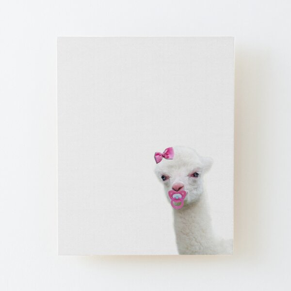 Baby Alpaca or Llama with pink pacifier Wood Mounted Print