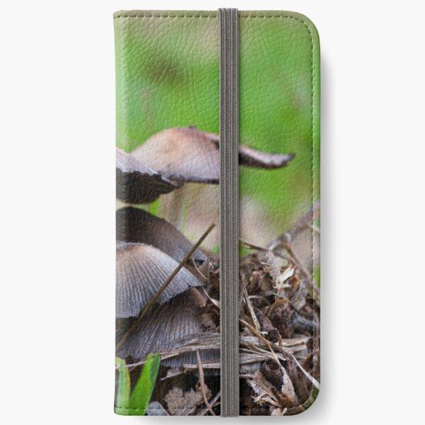 Mushrooms.  Macrophotography iPhone Wallet