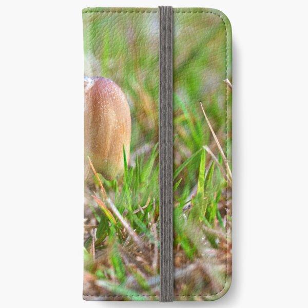 Mushrooms iPhone Wallet