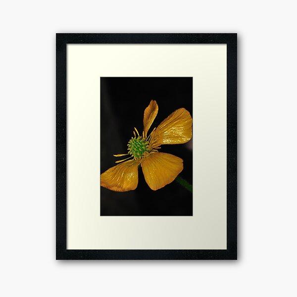 Tired Yet Vibrant Framed Art Print