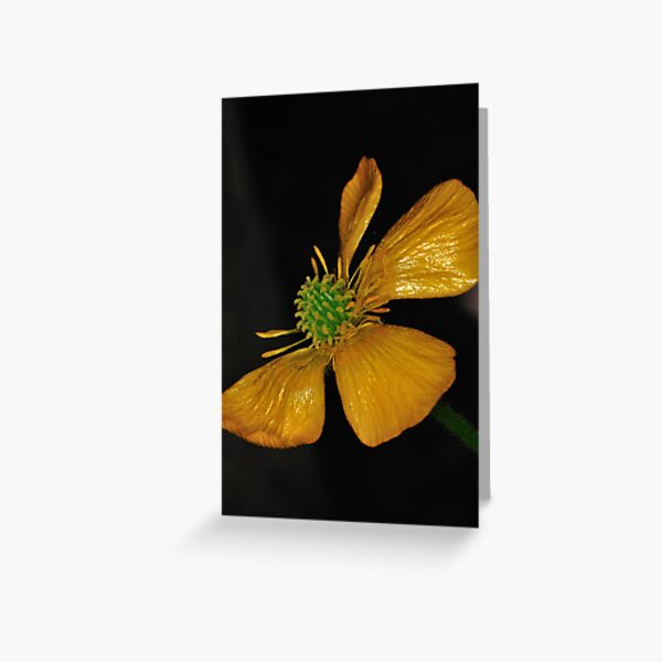 Tired Yet Vibrant Greeting Card