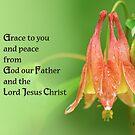 Grace to you ~ 2 Corinthians 1:2 by Robin Clifton