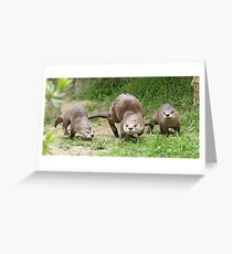 Otters together Greeting Card