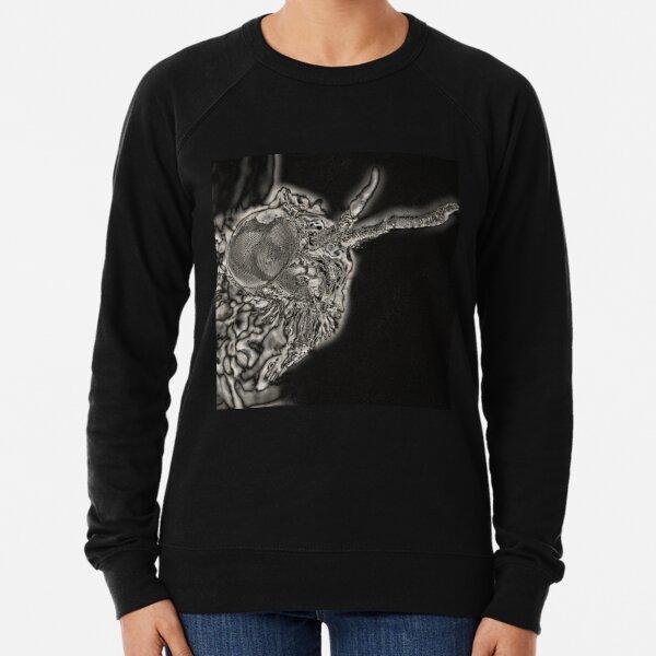 Spectral Darkness 13 Lightweight Sweatshirt