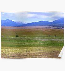 Peaceful Pastureland Poster
