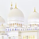 Sheikh Zayed Mosque by Colin White