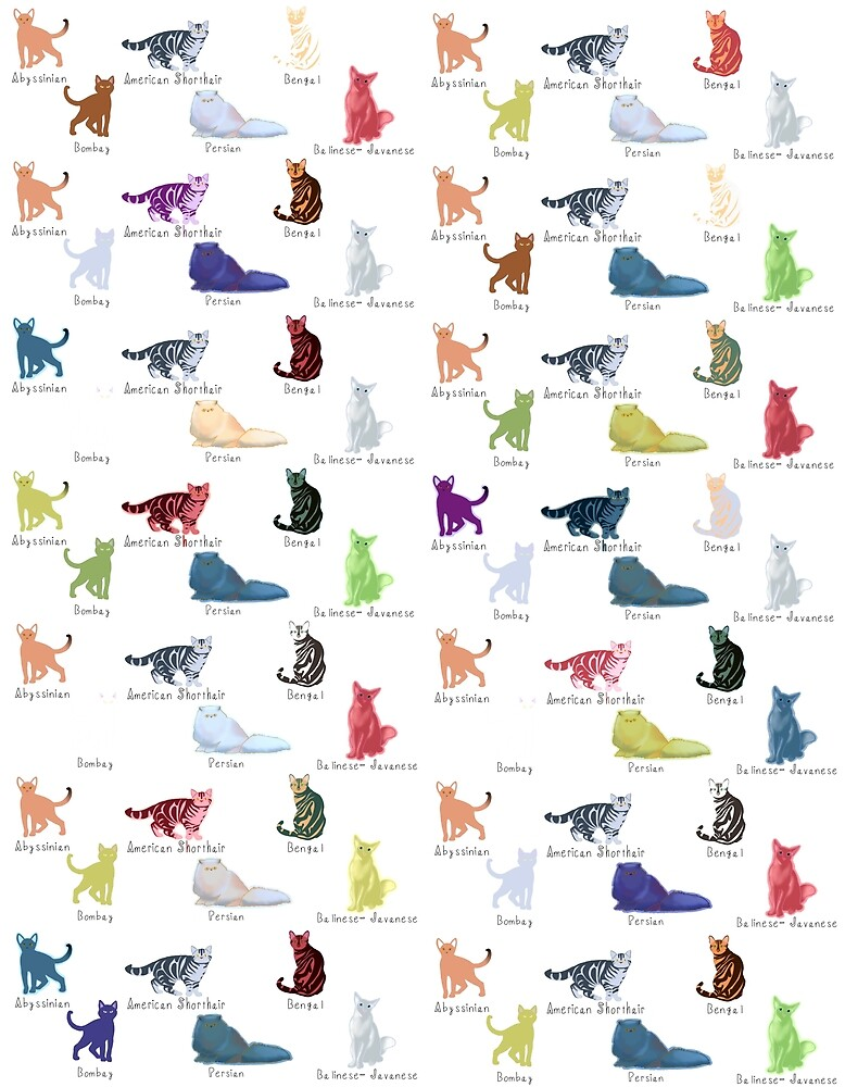 Colourful cat breeds by Quick2Draw