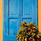 Blue Shutters by Dave Hare