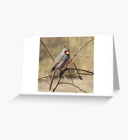 Her Mate Greeting Card
