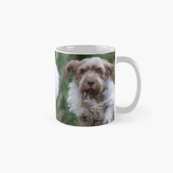 Italian Spinone Dogs in Action ~ Annabelle and Thane  Classic Mug