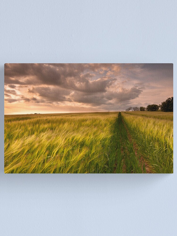 Alternate view of Tracks Canvas Print