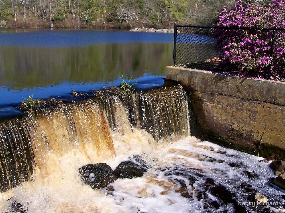 Paskamansett  River Falls by Nancy Richard