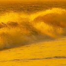 Golden Waves by Dave Hare