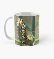 Black Swallowtail Caterpillar  Classic Mug