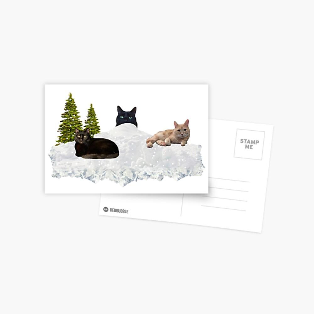 Blue Christmas V4 Postcard