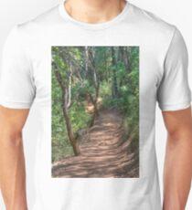Trail To Hidden Falls T-Shirt