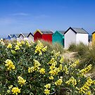 Beach Huts on the dunes by BizziLizzy