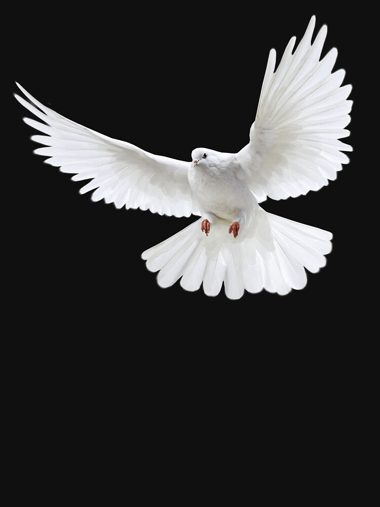 white flying pigeon by liesjes