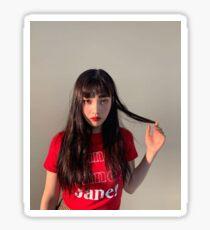 Roter Samt Joy Park Sooyoung Sticker