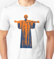 Hail to the Orange, Hail to the Blue Unisex T-Shirt