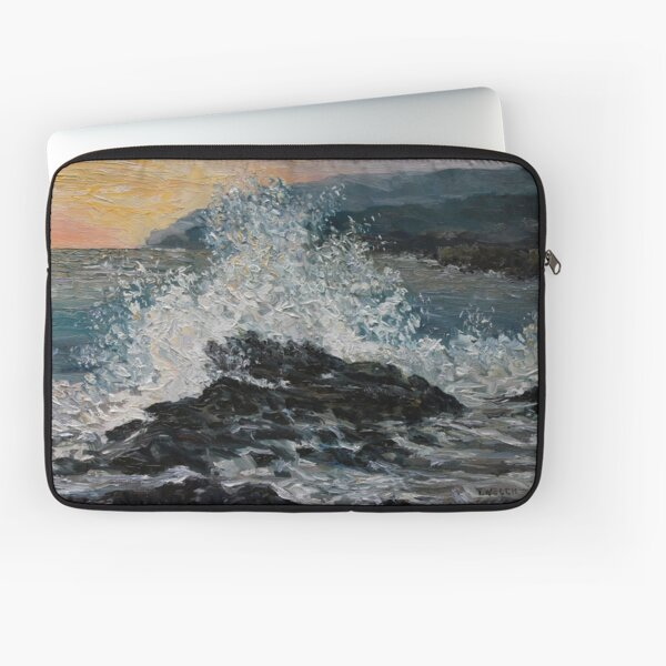 Point No Point Mid-storm Laptop Sleeve