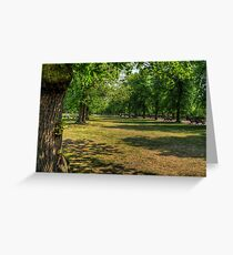 The Park - Greenwich Greeting Card