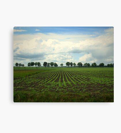 Landscape  Hunzedal Canvas Print