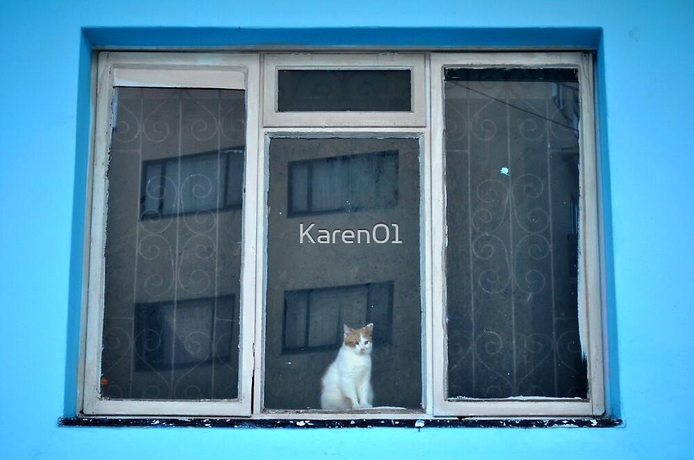 Cat in a window.. by Karen01