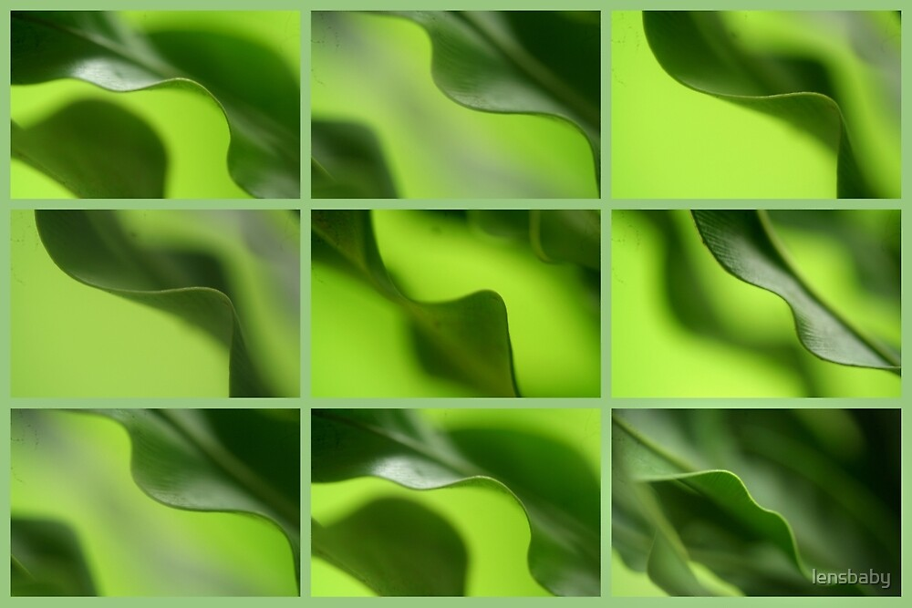 waves of green by lensbaby