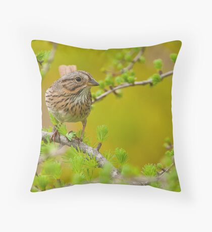 Lincoln's Sparrow on Tamarack Throw Pillow