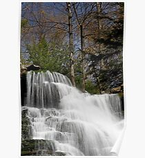 F. L. Ricketts Falls (top) Poster