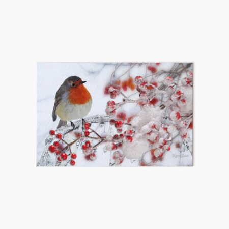Robin Red Breast in Winter Art Board Print