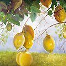 lemons by hangwilliamson