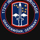 172nd Infantry Bde from Grafenwohr, Germany by jcmeyer