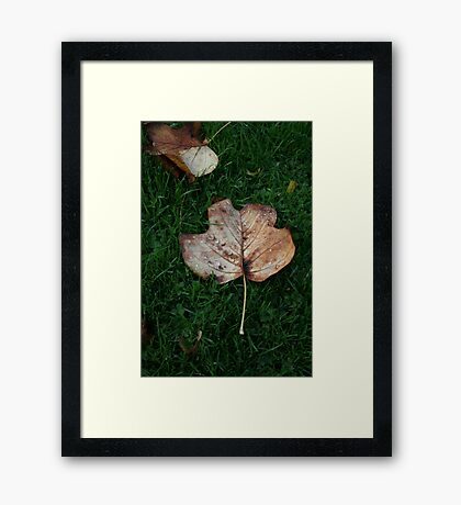 Fall of the Leaf Melancholia Framed Print