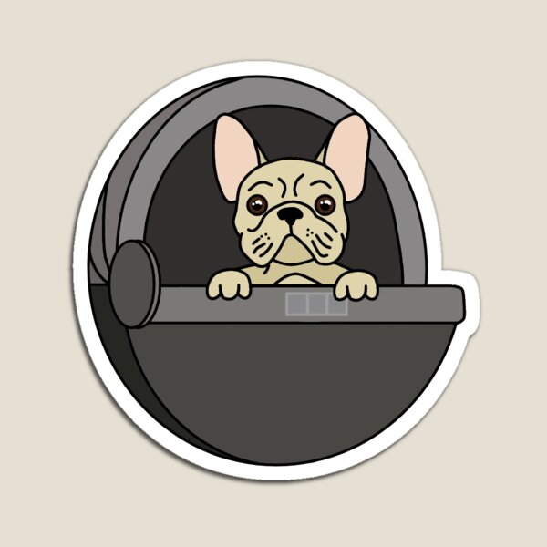 französische Bulldogge in der Hülse Magnet
